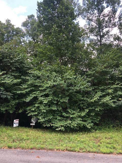 Feldspar Rd, New Tazewell, TN 37825 (#1098474) :: Catrina Foster Group