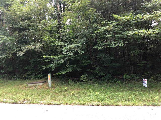 Jade Lane, New Tazewell, TN 37825 (#1098476) :: Catrina Foster Group