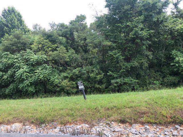 Cinnabar Drive, New Tazewell, TN 37825 (#1098477) :: Catrina Foster Group