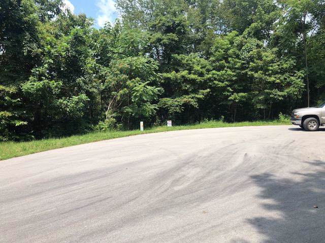 Moonstone Lane, New Tazewell, TN 37825 (#1098479) :: Catrina Foster Group