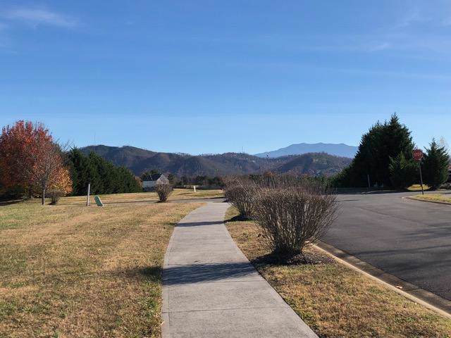 Lot 35 Oakley Manor Court, Sevierville, TN 37862 (#1098593) :: Tennessee Elite Realty