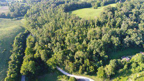 Greasy Hollow Rd, Speedwell, TN 37870 (#1098673) :: Venture Real Estate Services, Inc.