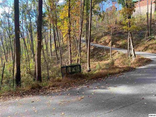 628 Loop Road, Gatlinburg, TN 37738 (#1099266) :: SMOKY's Real Estate LLC