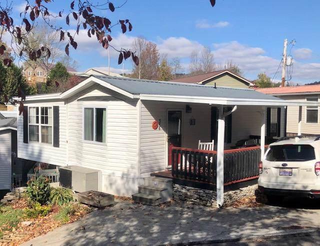 546 Flamingo Circle, Townsend, TN 37882 (#1100272) :: SMOKY's Real Estate LLC