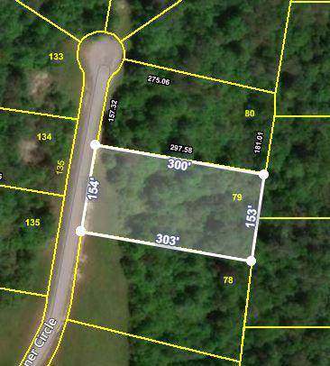 Stone Cliff Circle, Jamestown, TN 38556 (#1100372) :: Shannon Foster Boline Group