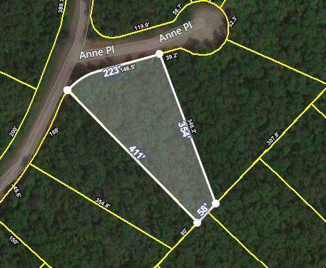 Anne Place, Monterey, TN 38574 (#1100384) :: Shannon Foster Boline Group