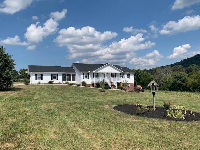 236 S Flat Creek Rd, Sevierville, TN 37876 (#1100485) :: SMOKY's Real Estate LLC