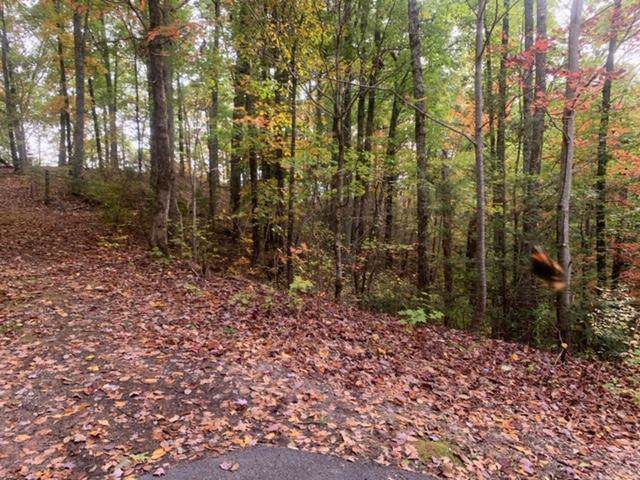 Lot 4 Oakridge View Lane, Sevierville, TN 37876 (#1100515) :: Billy Houston Group