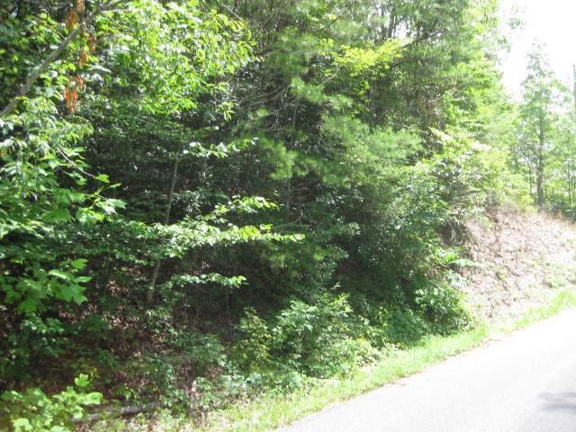 Black Gum Gap Rd, Gatlinburg, TN 37738 (#1100531) :: Tennessee Elite Realty