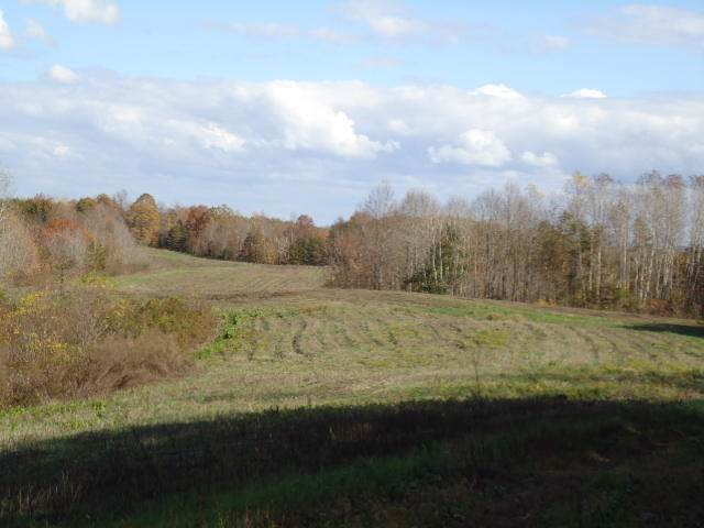 229.94ac Mccormick Ridge Rd, Red Boiling Springs, TN 37150 (#1100547) :: Catrina Foster Group