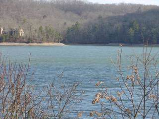 Serenity Dr, Lot 45, Harriman, TN 37748 (#1100724) :: Shannon Foster Boline Group
