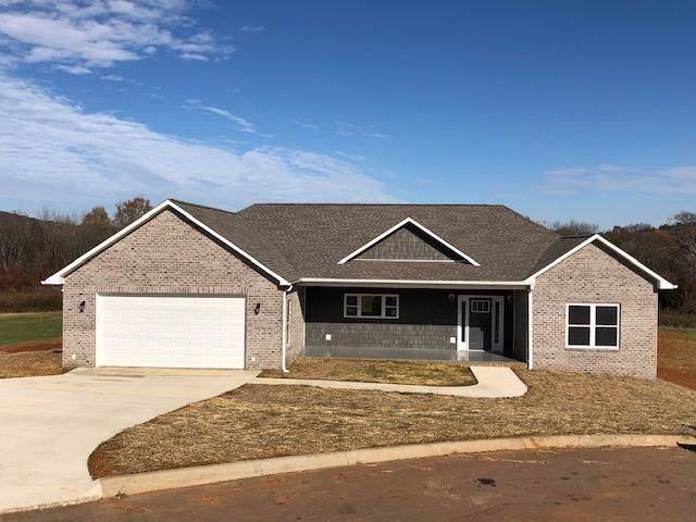 544 Mountain Vista Trail, Dandridge, TN 37725 (#1100839) :: Venture Real Estate Services, Inc.