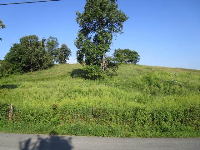 Elm Springs Ridge  Tract 1 & 2 Rd - Photo 1