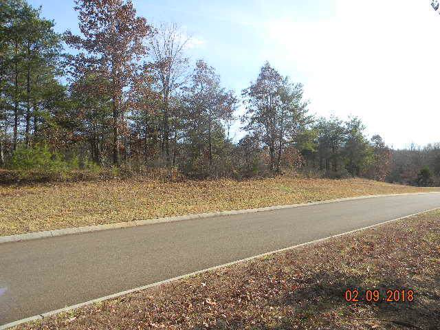 Lot 88 Red Wing Drive, Vonore, TN 37885 (#1102164) :: The Cook Team