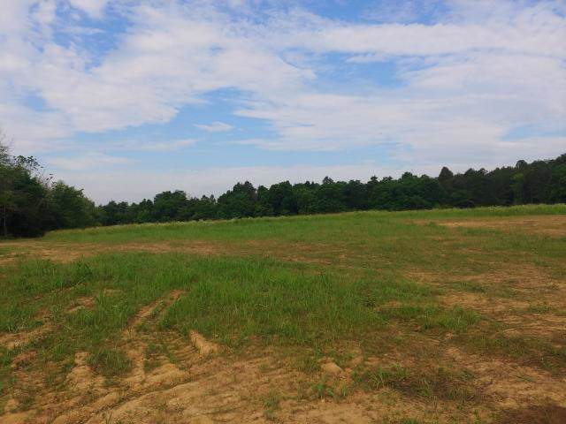 Lot 2 Tazewell Pike, Luttrell, TN 37779 (#1102253) :: Billy Houston Group