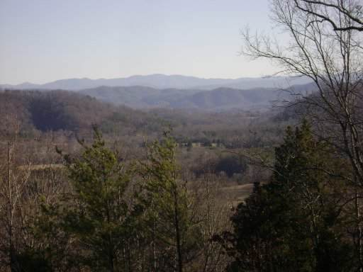 Tellico Camp Rd, Madisonville, TN 37354 (#1105819) :: Shannon Foster Boline Group
