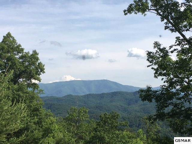 Lot 25 Summit Trails Drive, Sevierville, TN 37862 (#1105886) :: The Terrell Team