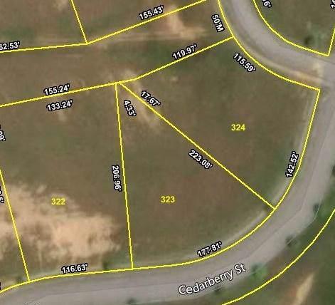 105 Cedarberry St, Oak Ridge, TN 37830 (#1105969) :: Billy Houston Group