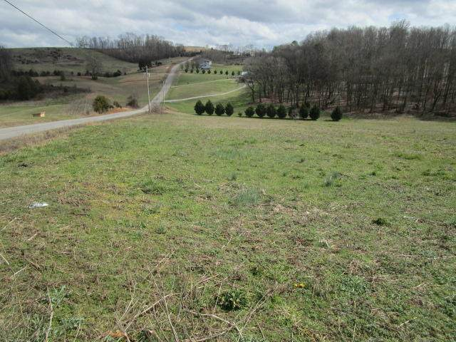 Indian Ridge Rd, Rutledge, TN 37861 (#1109149) :: Adam Wilson Realty