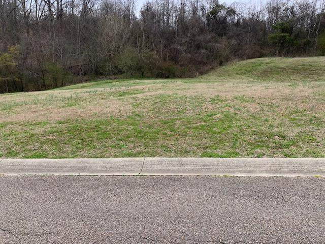 143 Rock Bridge Greens Blvd, Oak Ridge, TN 37830 (#1109803) :: Billy Houston Group