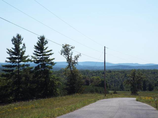 Lot 1a Mountain View Drive, Deer Lodge, TN 37726 (#1110635) :: Billy Houston Group