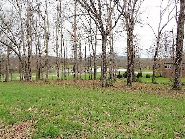 Dosha Court, Crossville, TN 38555 (#1113215) :: Tennessee Elite Realty