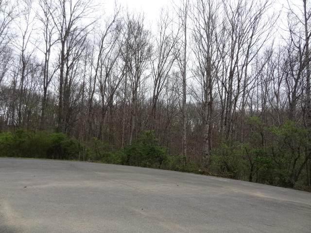 Eugene Court, Crossville, TN 38555 (#1113217) :: Shannon Foster Boline Group