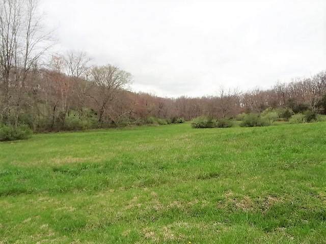 Ottoma Drive, Crossville, TN 38555 (#1113222) :: Shannon Foster Boline Group