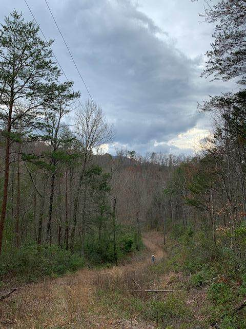 Off Caney Creek Rd - Photo 1
