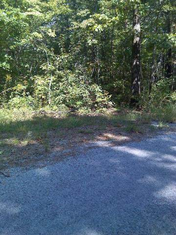 Dunway Drive, Crossville, TN 38572 (#1114227) :: Catrina Foster Group