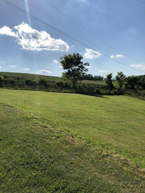 162 Watson Cut Rd, Tazewell, TN 37879 (#1116139) :: Venture Real Estate Services, Inc.