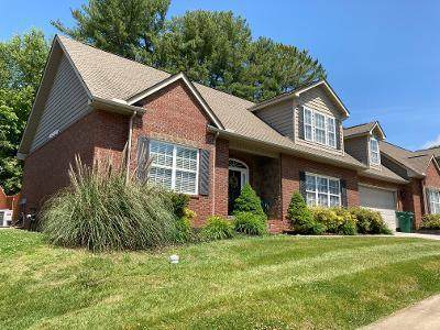 4221 Platinum Drive, Knoxville, TN 37938 (#1117855) :: Realty Executives