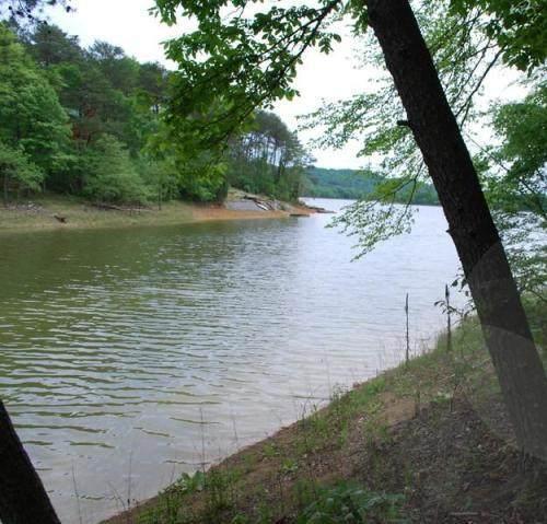 1527 Catoosa Drive, Mooresburg, TN 37811 (#1118497) :: Billy Houston Group