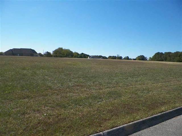 Big Oak, Dandridge, TN 37725 (#1118511) :: Billy Houston Group