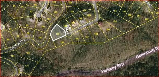 930 W Cedar Lane, Gatlinburg, TN 37738 (#1118715) :: Venture Real Estate Services, Inc.