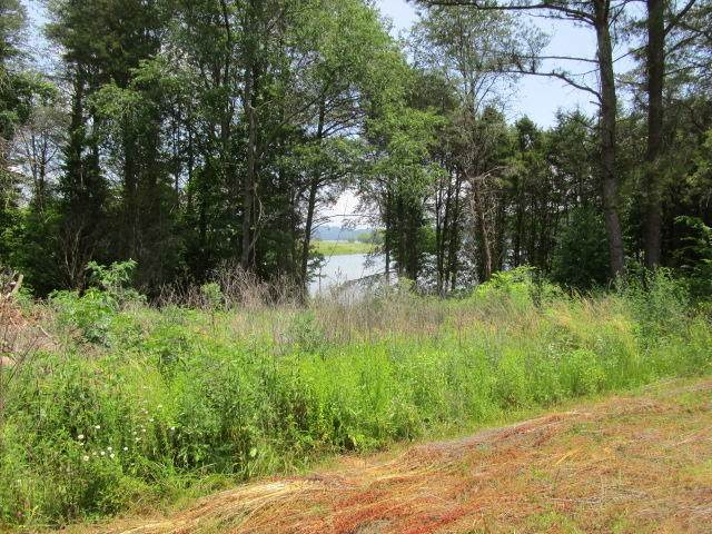 Lakeside Lane, Bean Station, TN 37708 (#1119072) :: Exit Real Estate Professionals Network