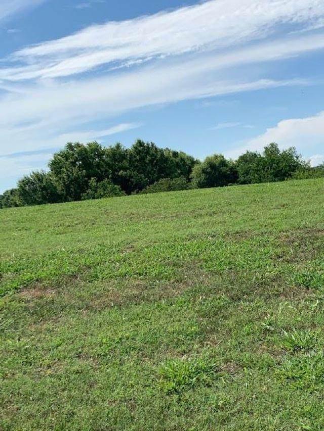 Lot 34 Wild Pear Trail Tr, Dandridge, TN 37725 (#1122352) :: Realty Executives Associates
