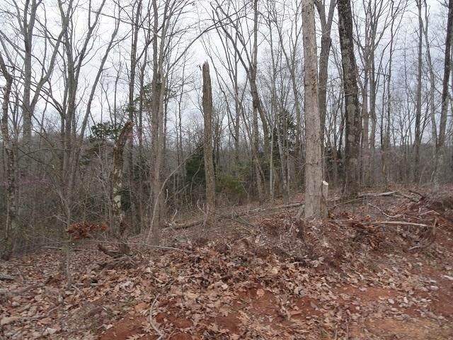 Lot # 132 Polly Mountain Rd, Madisonville, TN 37354 (#1123276) :: Cindy Kraus Group | Realty Executives Associates