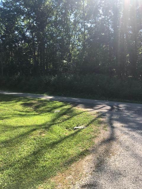 338 Loop Rd, Rockwood, TN 37854 (#1124071) :: Realty Executives Associates Main Street