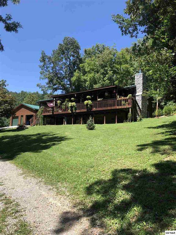 2646 Jackson Ridge Rd, Tazewell, TN 37879 (#1124453) :: Realty Executives Associates Main Street