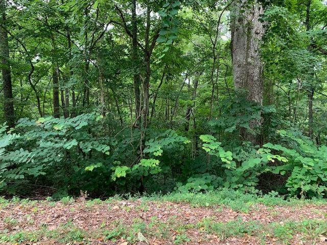 Lot 24 Booker Rd, Maynardville, TN 37807 (#1124623) :: Shannon Foster Boline Group