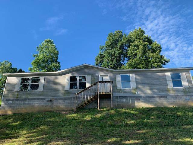 197 Cingular Drive, New Tazewell, TN 37825 (#1124892) :: Venture Real Estate Services, Inc.