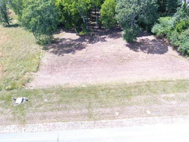 Water View Drive, Rockwood, TN 37854 (#1126209) :: Billy Houston Group