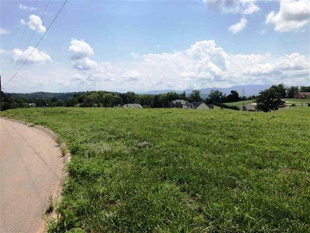 Mountain Vista Trail, Dandridge, TN 37725 (#1126999) :: Shannon Foster Boline Group