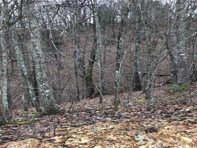 Lot 42E Harvest Moon Rd, Sevierville, TN 37862 (#1128092) :: Venture Real Estate Services, Inc.