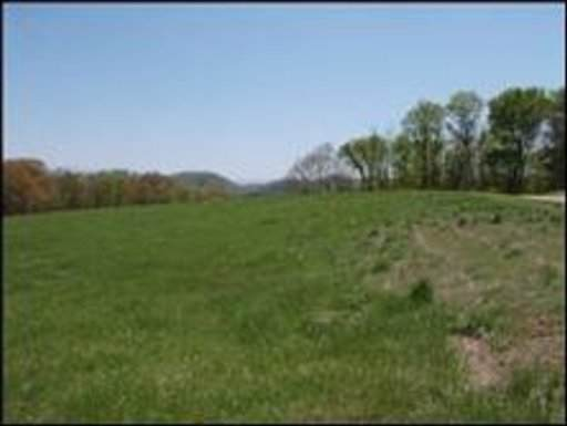 Lot 35R Sugar Maple Court, Madisonville, TN 37354 (#1128380) :: Catrina Foster Group