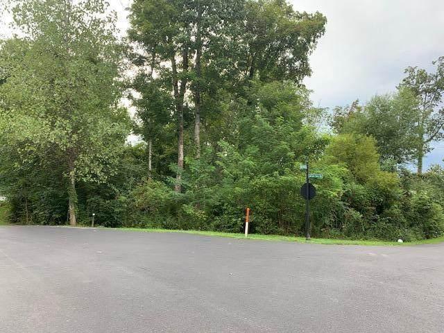Rocky Point Way, Sevierville, TN 37876 (#1128387) :: The Terrell Team