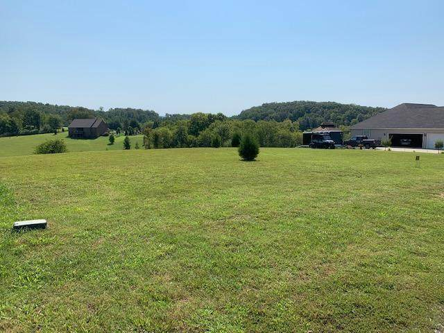 225 Majestic View Drive, Rockwood, TN 37854 (#1128997) :: Exit Real Estate Professionals Network