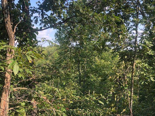 115 Clear Water, Wilder, TN 38589 (#1129699) :: Shannon Foster Boline Group