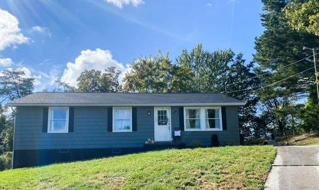 7429 Pinto Lane, Corryton, TN 37721 (#1131067) :: Tennessee Elite Realty